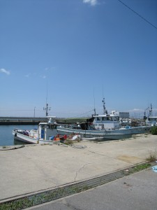 漢方の魚市場