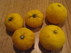 漢方の柚子