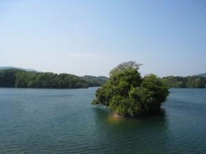 漢方のダム湖