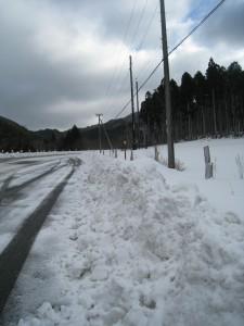 漢方の雪道