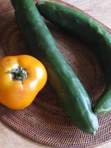 漢方のトマト、キュウリ