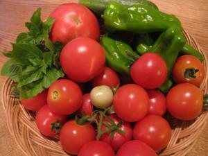 漢方のプチトマト