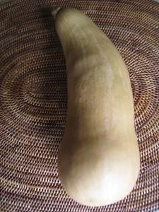 漢方のバターナッツカボチャ