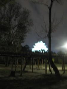 漢方の名古屋城