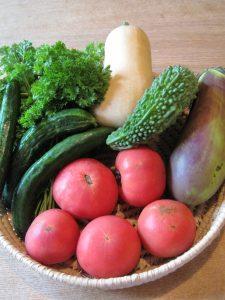漢方の夏野菜