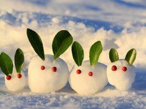 漢方の雪だるま