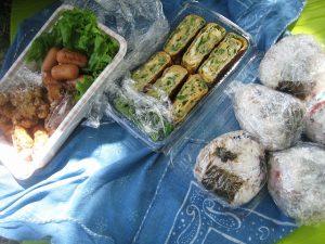 漢方の弁当